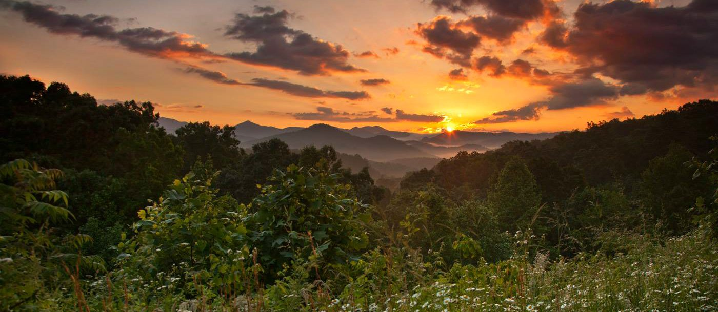 10 Best Things to Do in North Georgia