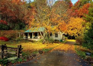 Beechwood Inn's Betty's Creek cabin in the Fall