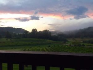 Stonewall Creek Vineyards