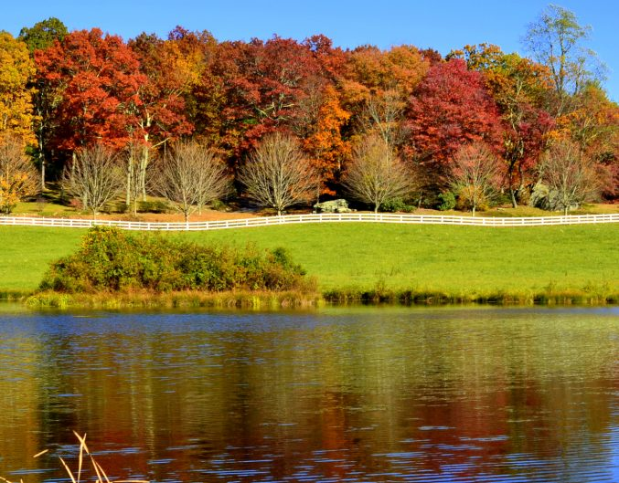 Pond in Fall Near Beechwood Inn