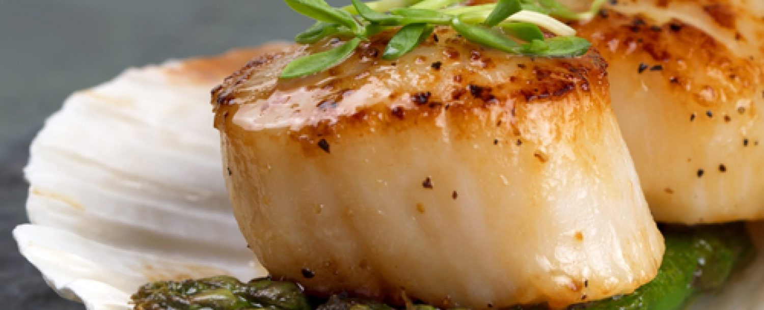 Image of Scallops and Best dining in North Georgia