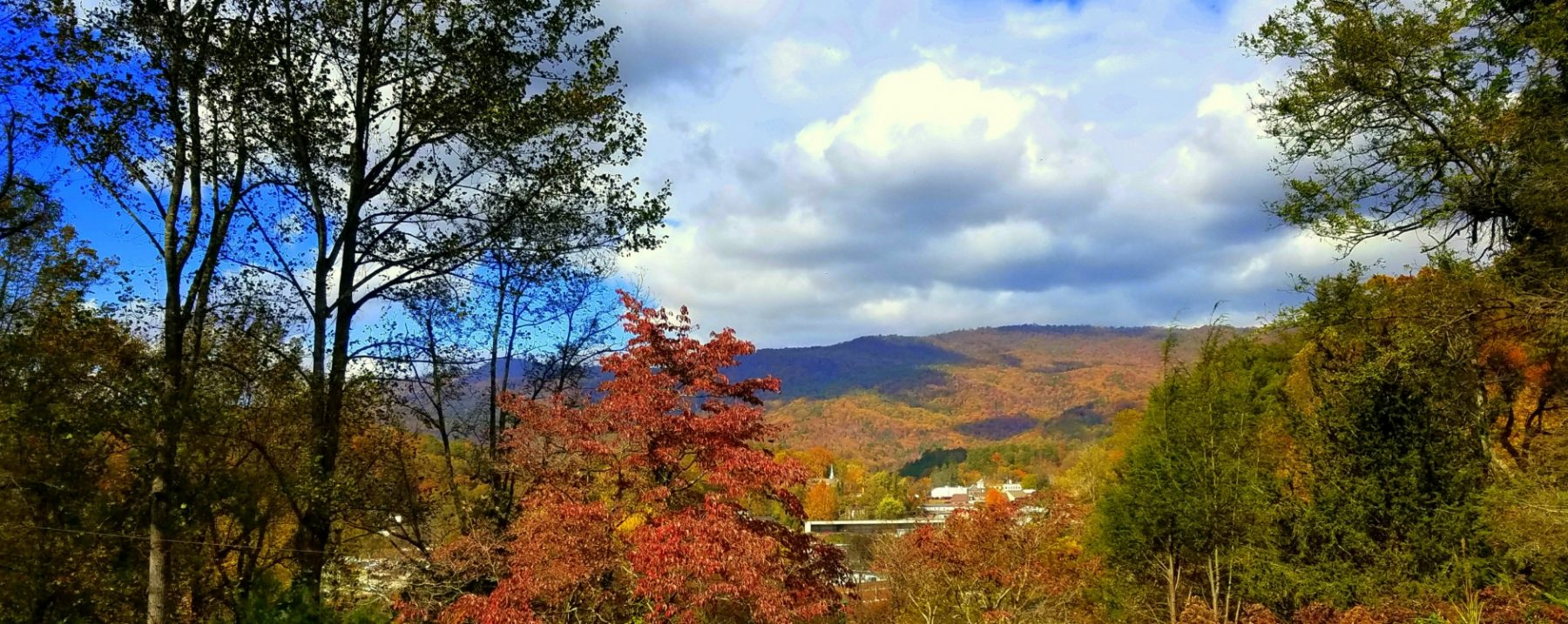 Image of Beechwood Inn's View of Black Rock Mountain in the Fall