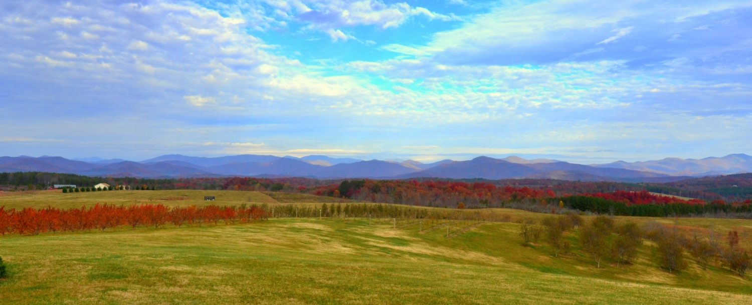 Fall Photo of Nearby Chattooga Belle farm