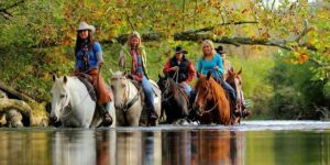 Image of Horse Back Riding in the Little Tennessee River