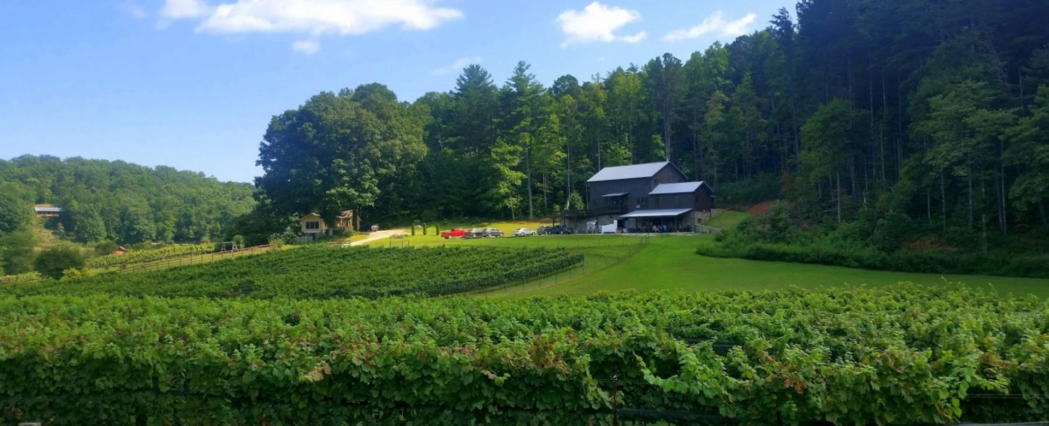 Image of Nearby Stonewall Creek Vineyards